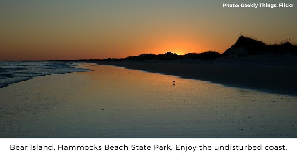 7 Gems Along Nc S Coast North Carolina Conservation Network